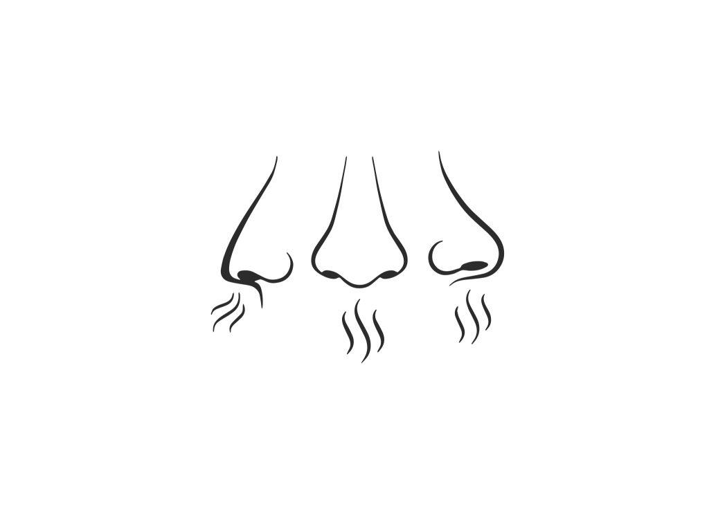 putri cinta 14 oral sex tips pussy lick tips 2021 breathing